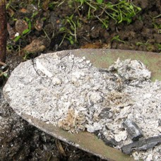 Five uses for your wood burning ashes period home style for Is wood ash good for the garden