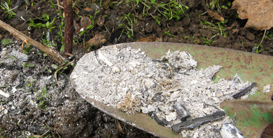 Five uses for your wood burning ashes victorian fireplace store for Is wood ash good for the garden
